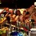Daiquiri Cocktail Bar Golden Sands Bulgaria